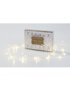 Guirlande lumineuse 3 mètres 60 LEDS lumière chaude